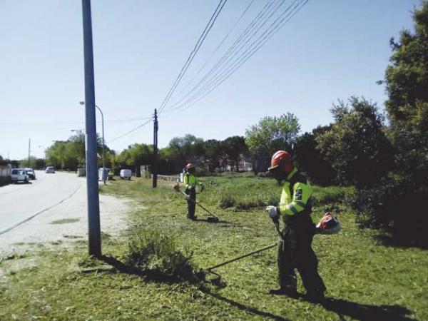 Desbroce de zonas verdes y viales